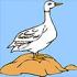 Lonely duck – pokoloruj kaczkę :)